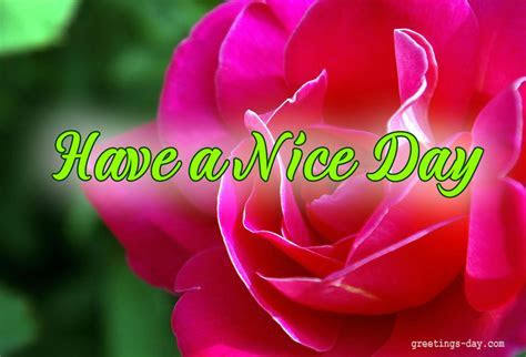 Have A Nice Day ? Cards, Pictures. ? Holidays