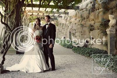 wedding photo wisteria garden