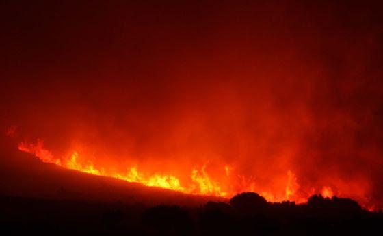 incedios cataluña 2012, incendio 2012, incendio, adios bosque