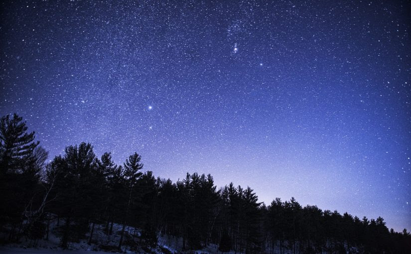 Les Yeux Vers Le Ciel Janvier Parcs Blog