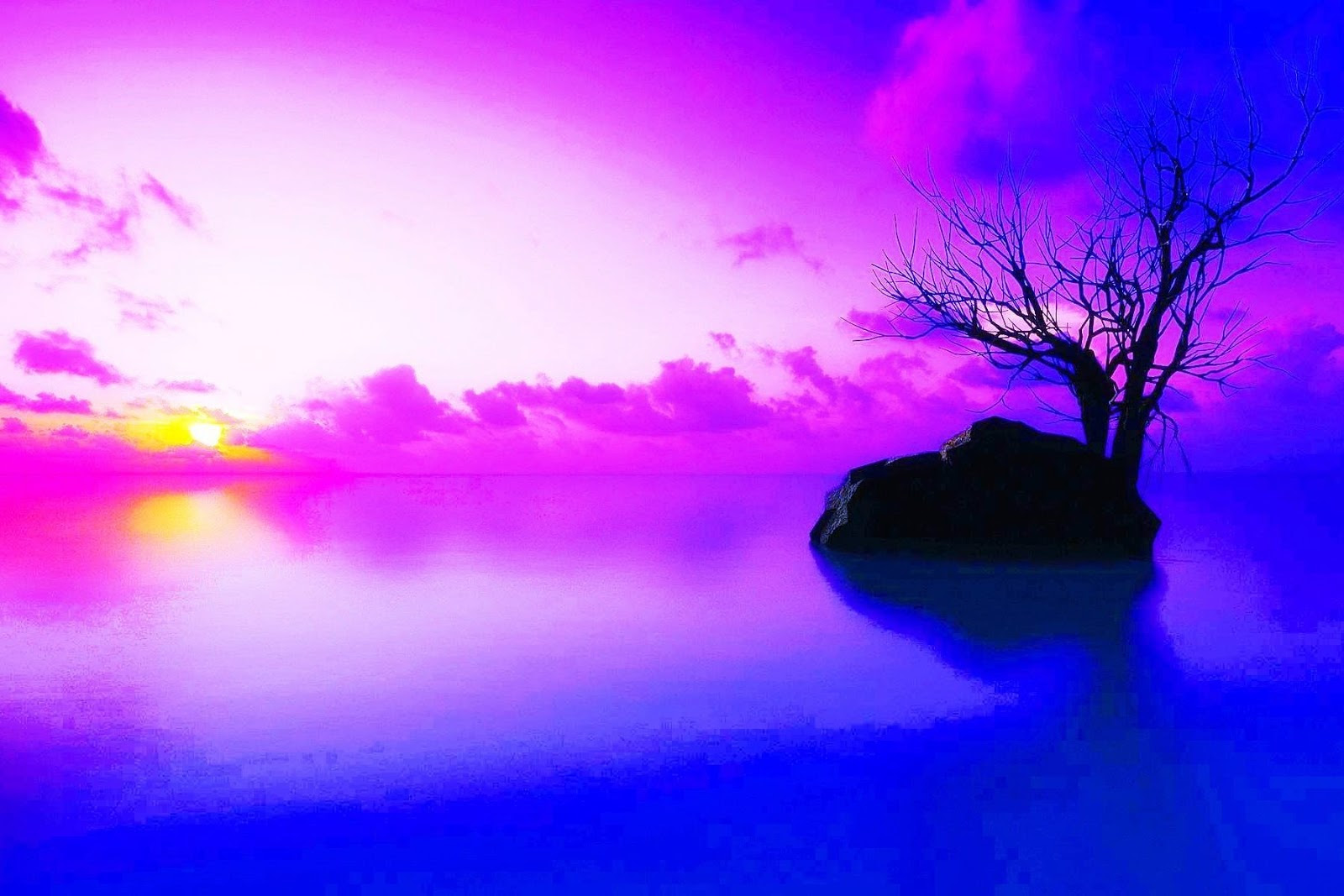 Download 900 Wallpaper Hd Background HD Terbaru