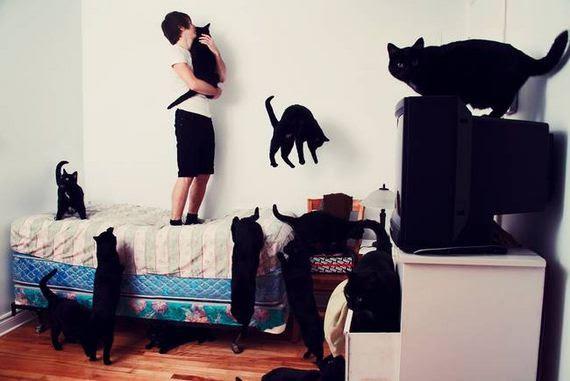 μεγαλύτερες-γάτα-εραστής