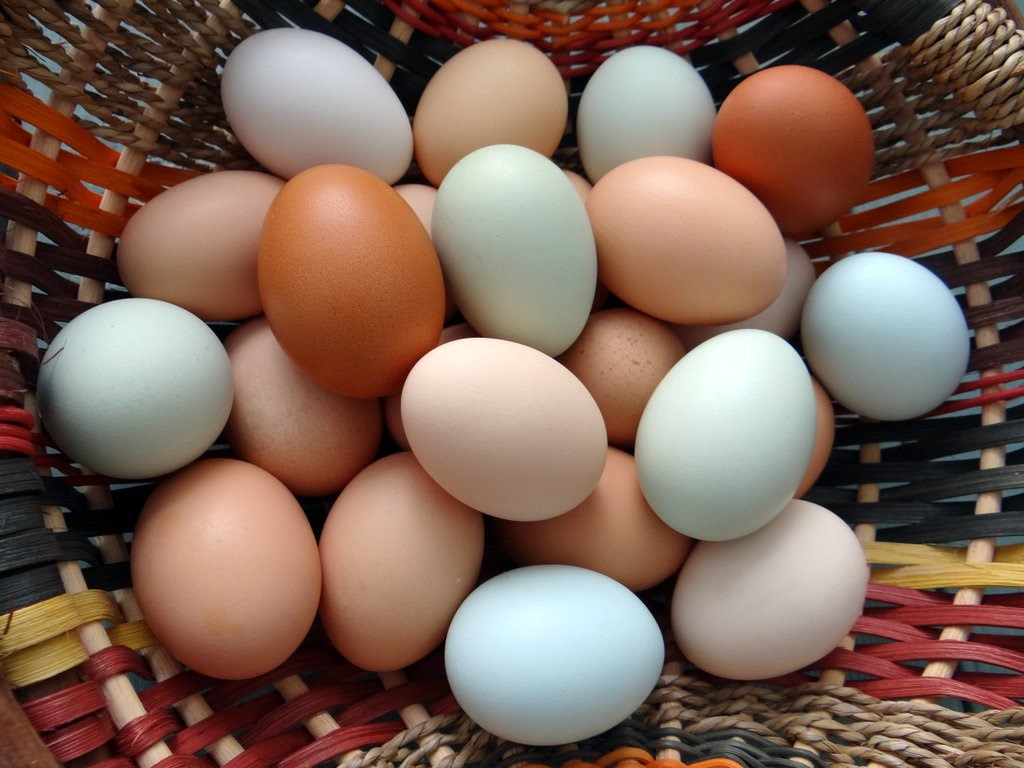 photo of a basket of eggs