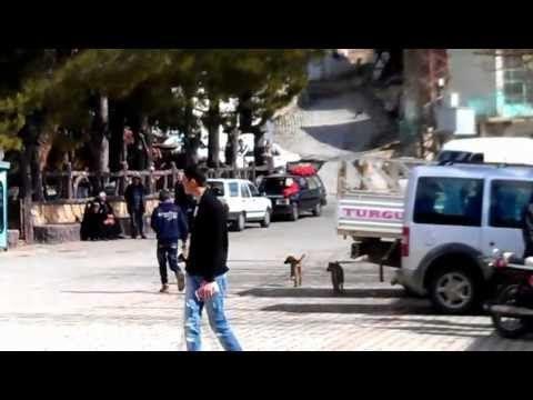 Dere Kasabası Önecekten Görünümler 17.02.2013 Pazar