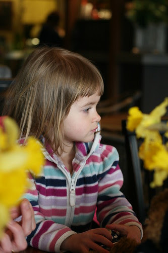 daffodil-girl