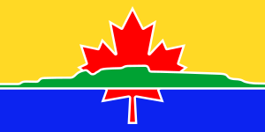 An approximation of the flag of the City of Th...
