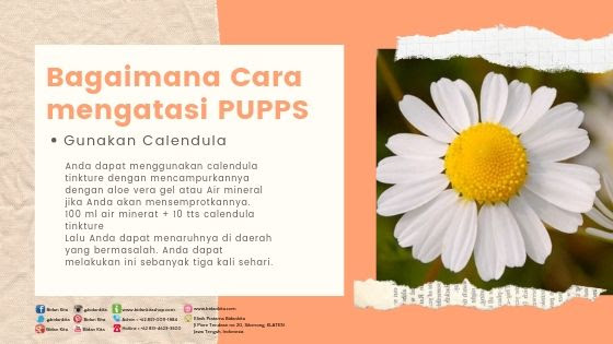 PUPPS yang dimaksud disini bukanlah buang air besar ataupun anak anjing PUPPS