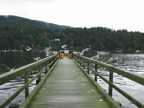 lodge dock