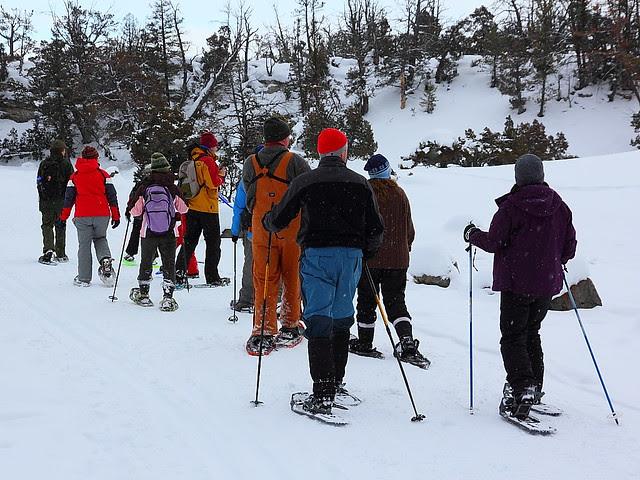 IMG_5634 Snowshoeing