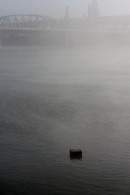 fog, downtown portland