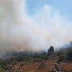 בית מאיר: תושבים פונו בגלל שריפה - ישראל היום