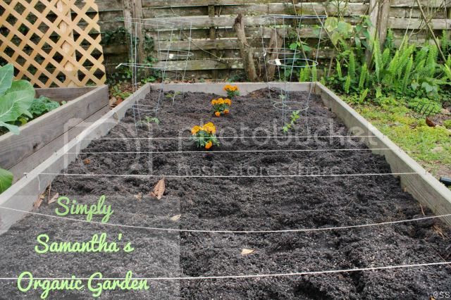 Simply Samantha Organic Garden