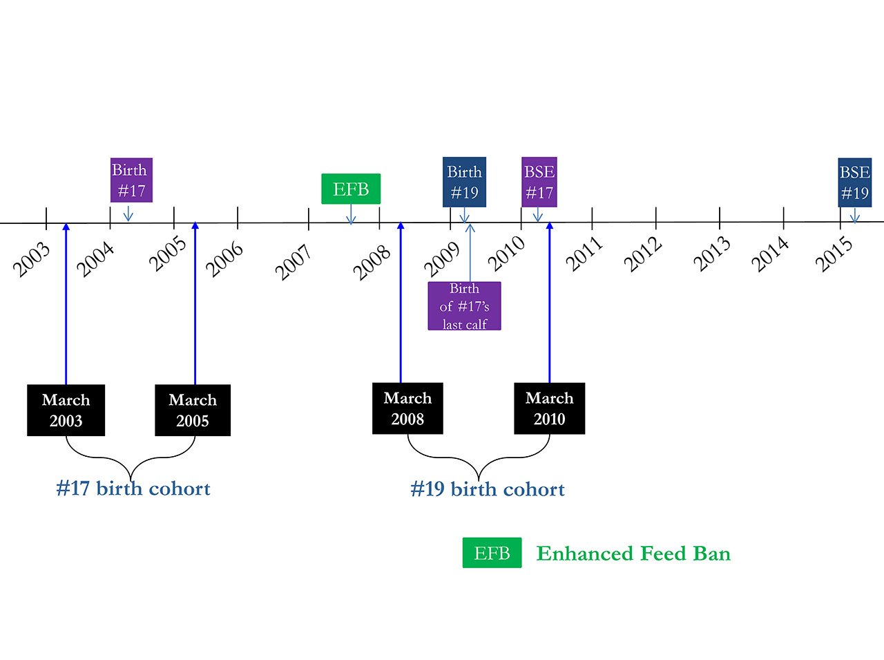 Figure 2. Timeline (birth and death) of BSE Cases #17 and #19 Born on the Same Farm. Description follows.