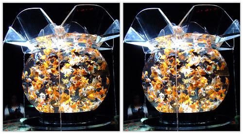DSCF0868 アートアクアリウム展2012 (parallel 3D)