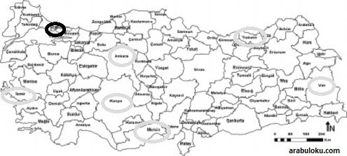 Istanbul Izmir Ankara Mersin Trabzon Van Konya şehirlerini