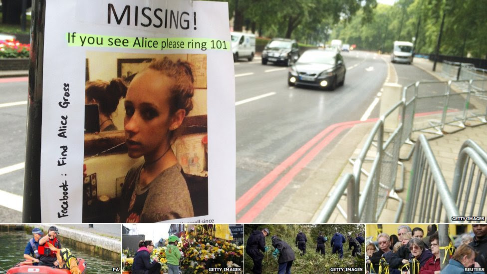 Search for Alice Gross
