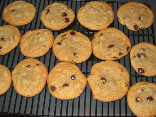 Chocolate Chip Cookies, baking, oven, bakery, desserts