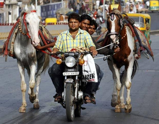 Em maio de 2011, um motociclista foi visto levando dois passageiros na garupa de sua moto enquanto eles puxavam dois cavalos em uma estrada na cidade indiana de Ahmedabad. (Foto: Amit Dave/Reuters)