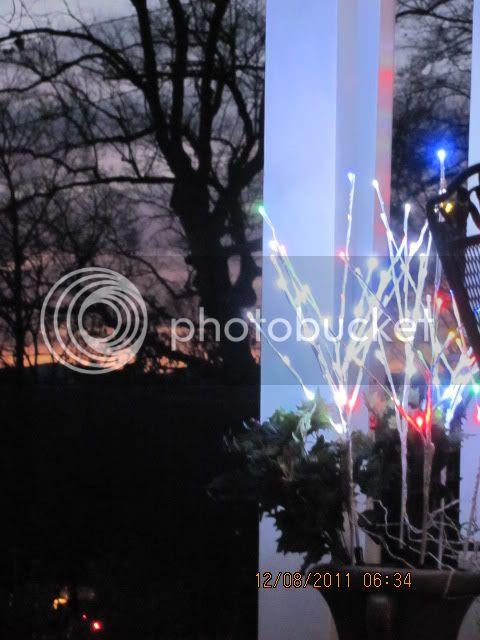 photo Christmaslights029.jpg