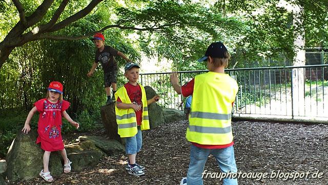 Zoo Köln Juli 2012