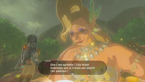 Obtenir Un Fragment Détoile Soluce The Legend Of Zelda