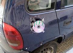 Carro Flex