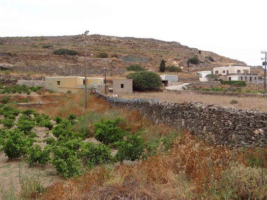 http://www.exploring-greece.gr/_tp_media/Syros/14169_f.jpg