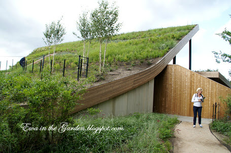 Ewa in the Garden: 8 photos of most impressive green roof building at Floriade 2012 | Eco-friendly roofs:  green, white, and garden | Scoop.it