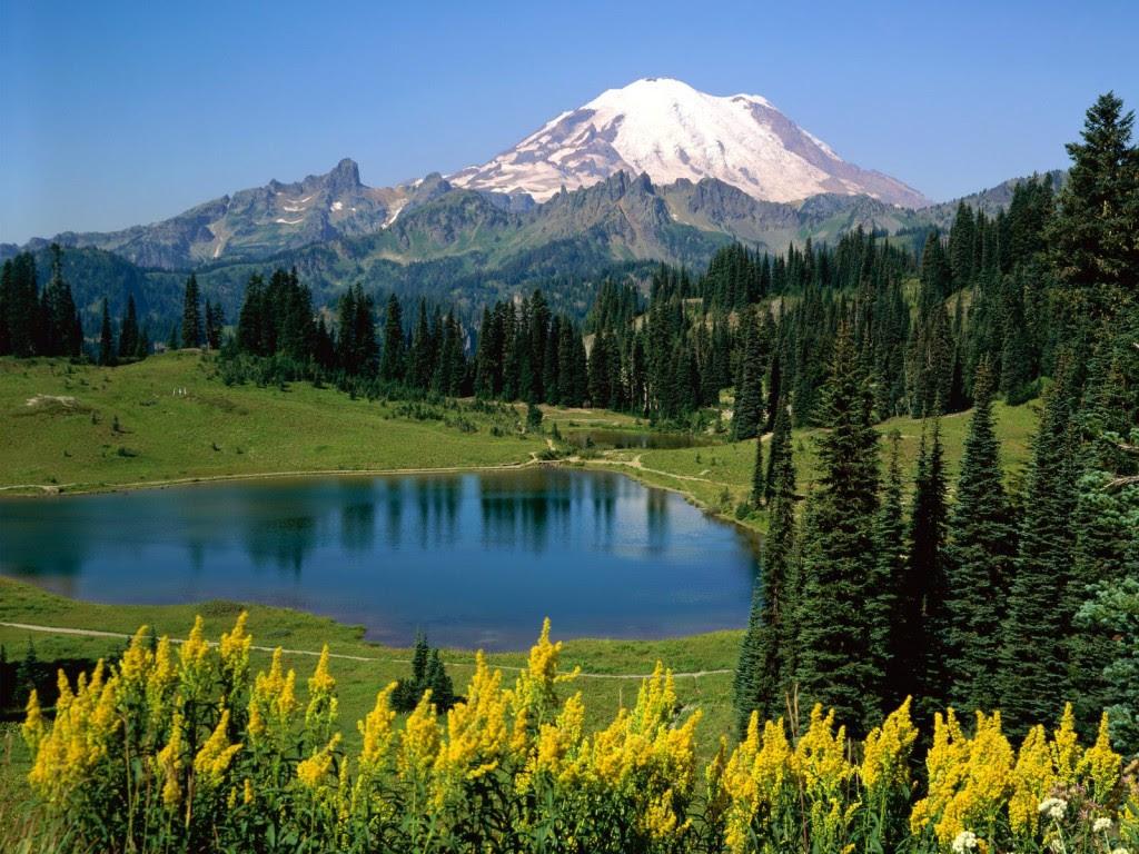 Washington State Nature