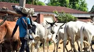 ARREST OF HERDSMEN