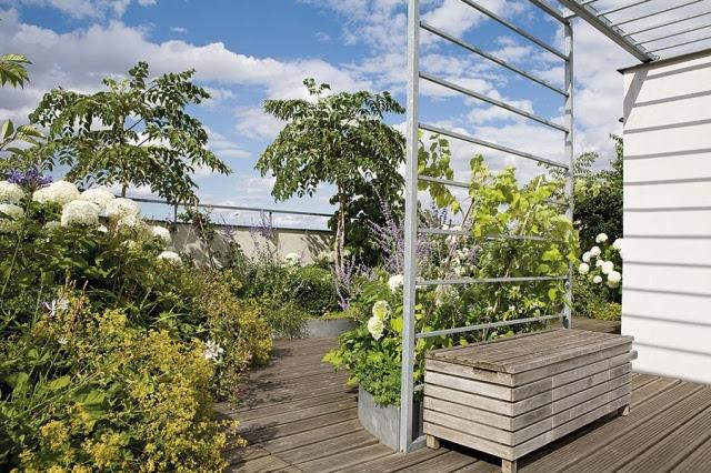 استغلال الاسطح المنزلية وشرفات البيت