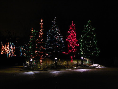 Chicago Lincoln Park Zoo  Lights 12.13.2009 (6)