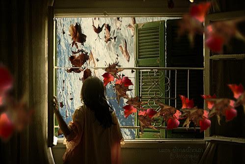 Fallen Birds, Fallen Leaves. by Usra :)