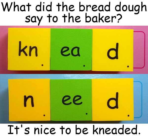 dough 麵糰 knead 揉捏 need 需要 homophones 同音異義字