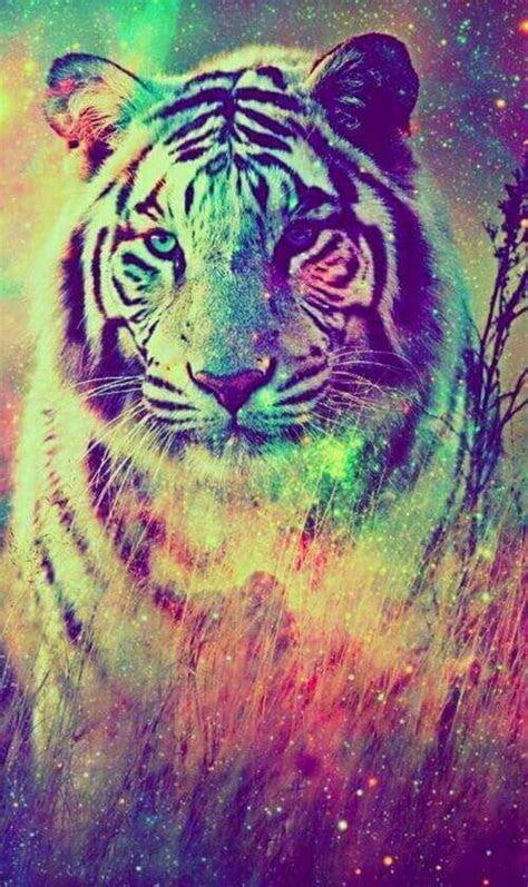 colours background     pinterest