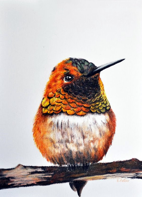 color pencil drawing Examples (19)