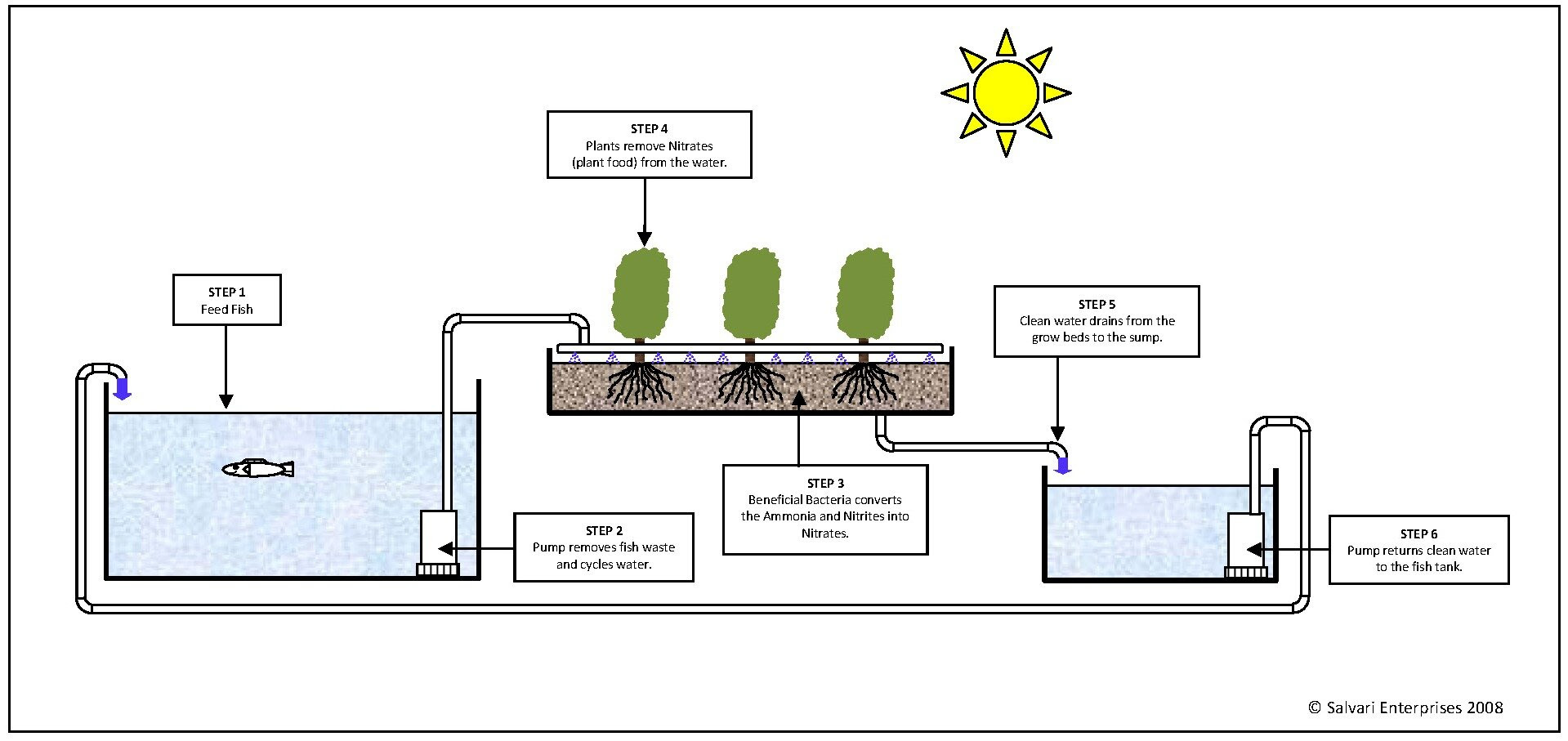 Commercial Aquaponics System Cost ~ Aquaponis Manual Plans