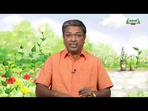 Class 10, வகுப்பு 10 அறிவியல், அலகு 12 தாவர உள்ளமைப்பியல், தாவர செயலியல் பகுதி 2 Kalvi TV