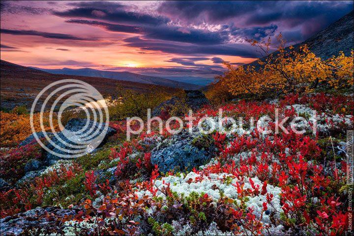 photo Ermolitskii-Alexander-4_zps2najez7r.jpg