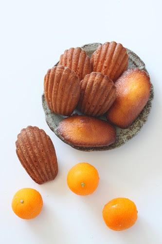 Kumquat 11