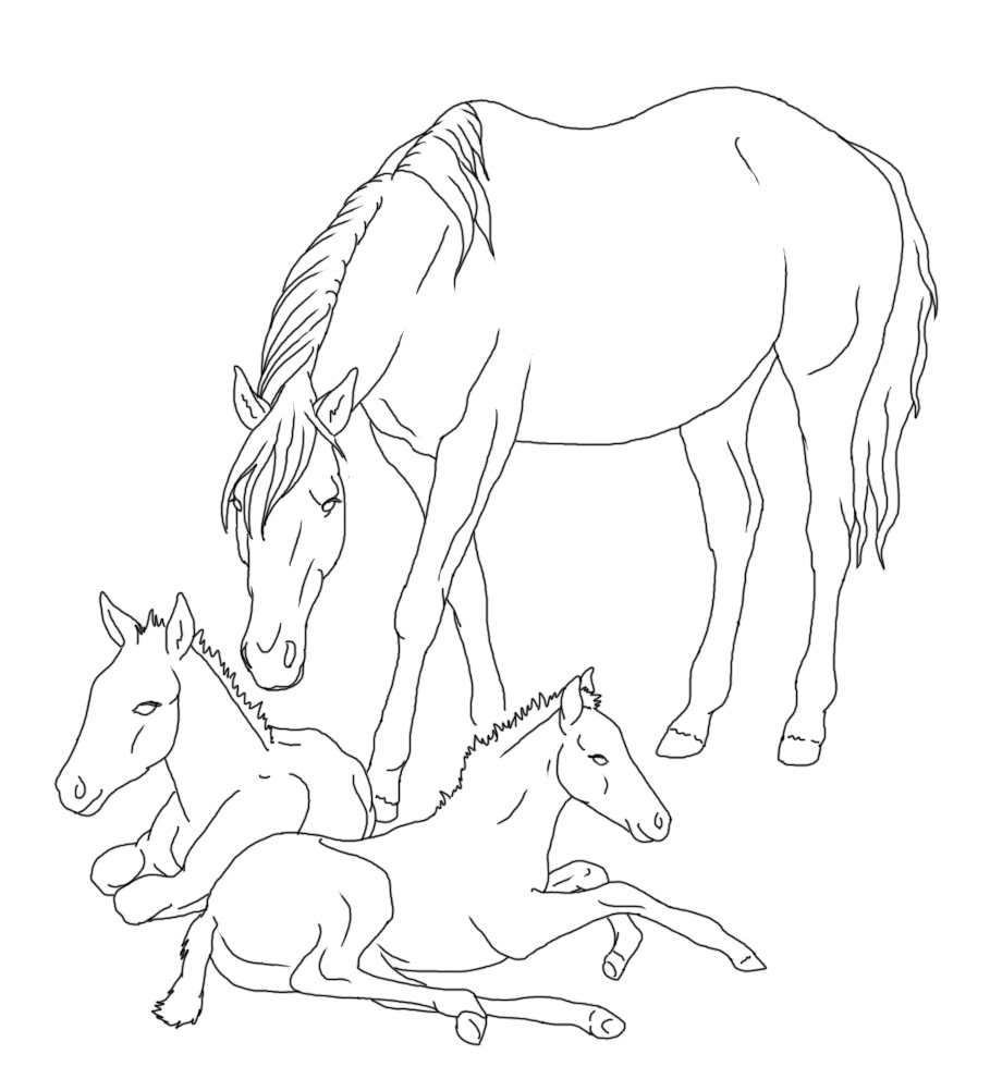 Realistic Horse Coloring Pages at GetColorings.com | Free ...