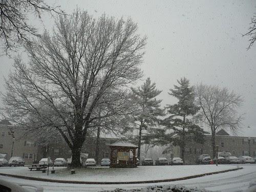 Dec 5 (10)
