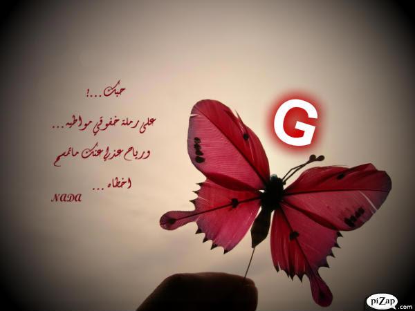 Lifeofanut حرف G بالورد الاحمر