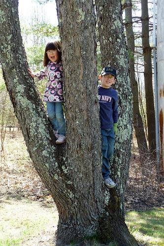 Adam and Dova in the tree