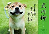 犬川柳 2011年 カレンダー
