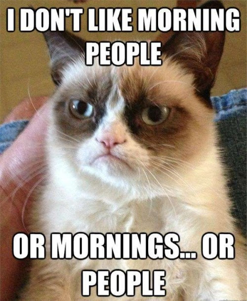 I don't like morning people…or mornings…or people.
