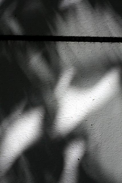 shadows, sw 2nd & clay