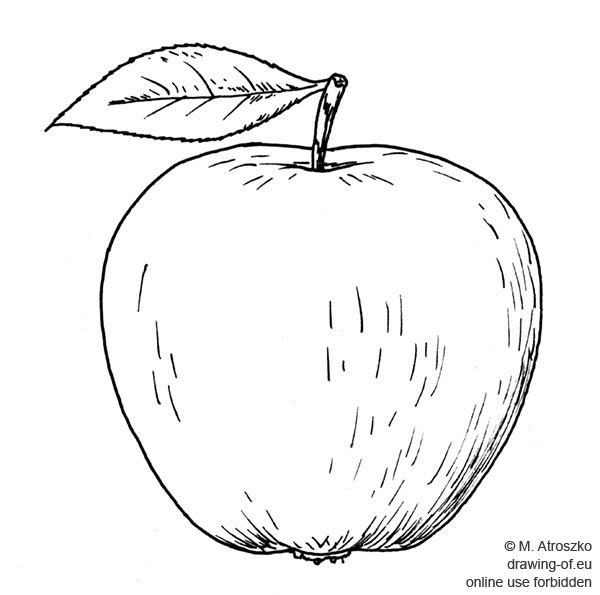 Manzana Dibujo Dibujos