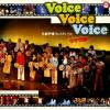 V/A - voice voice voice