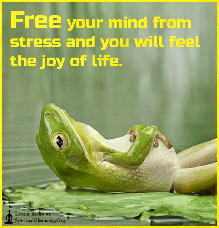 Free Your Mind From Stress And You Will Feel The Joy Of Life